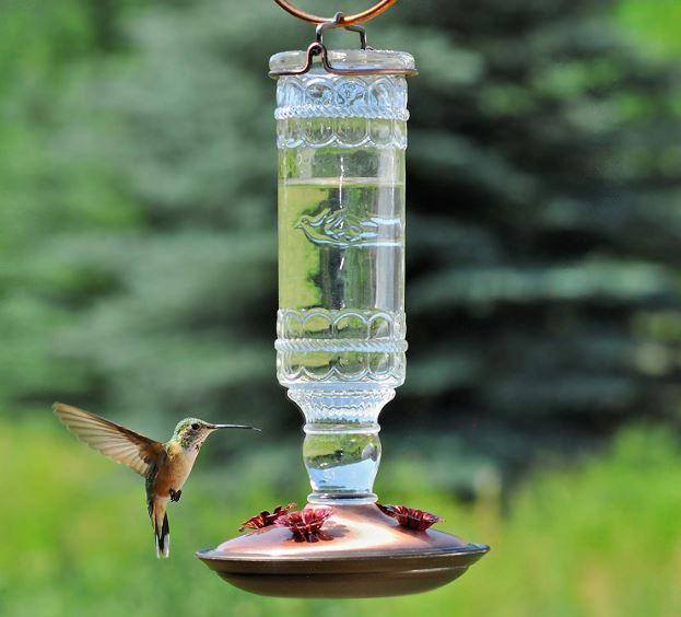 bebederos-para-colibries-de-cristal