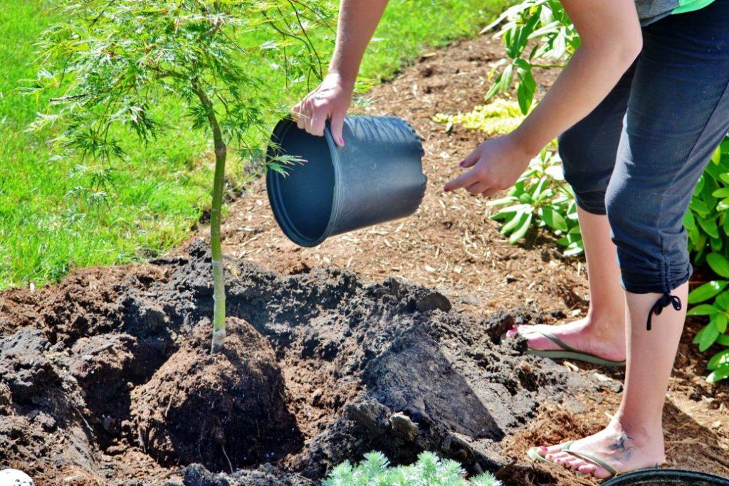 Crea un plan de negocios para tu nuevo proyecto ecológico